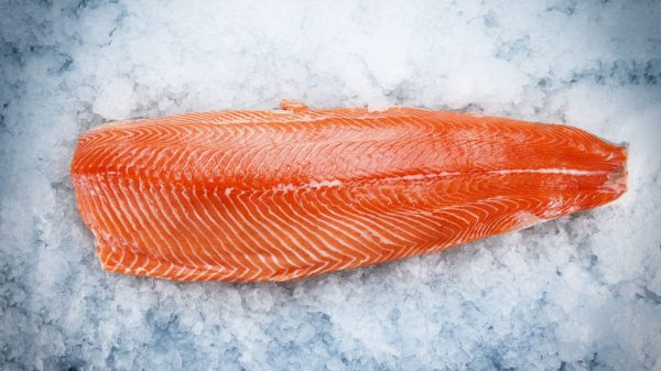 Frozen Fish: Trout