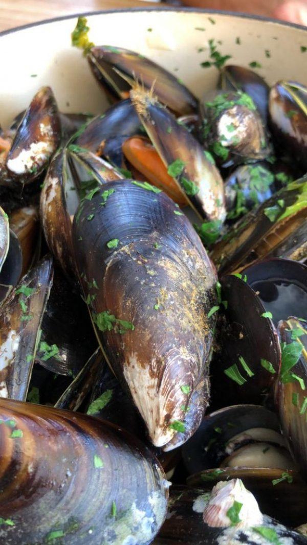Mussel Monger mussels