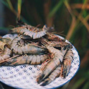 Frozen Seafood: Prawns (Mozambique)